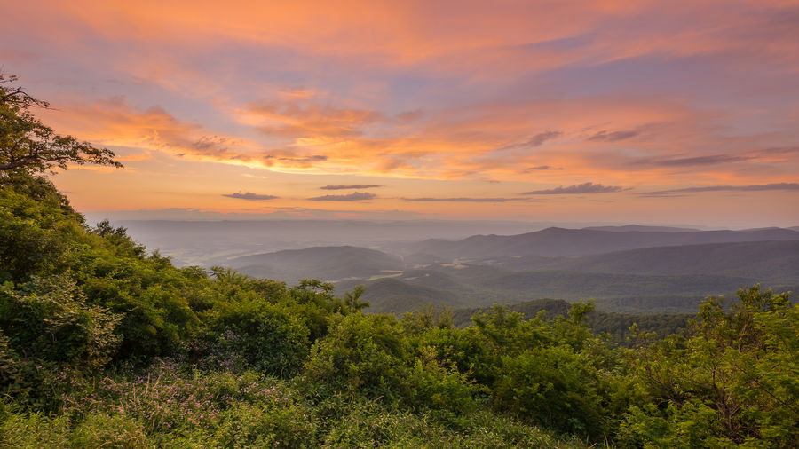 A vivid sunset from Jewell Hollow Overlook in Shenandoah National Park National Park Orange Shenandoah National Park Vivid Beauty In Nature Dusk Landscape Mountain Mountain Range Mountains Nature No People Outdoors Park Pink Color Purple Scenics Sky Sunset Tranquil Scene Tranquility Tree