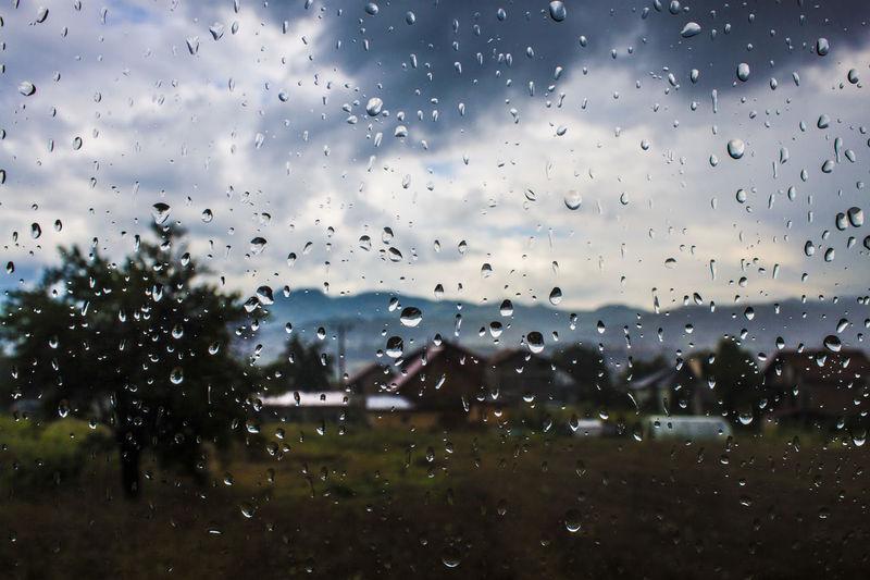 Close-up Cloud - Sky Drop Full Frame Glass Glass - Material Indoors  Nature No People Plant Rain RainDrop Rainy Season Sky Transparent Tree Water Wet Window