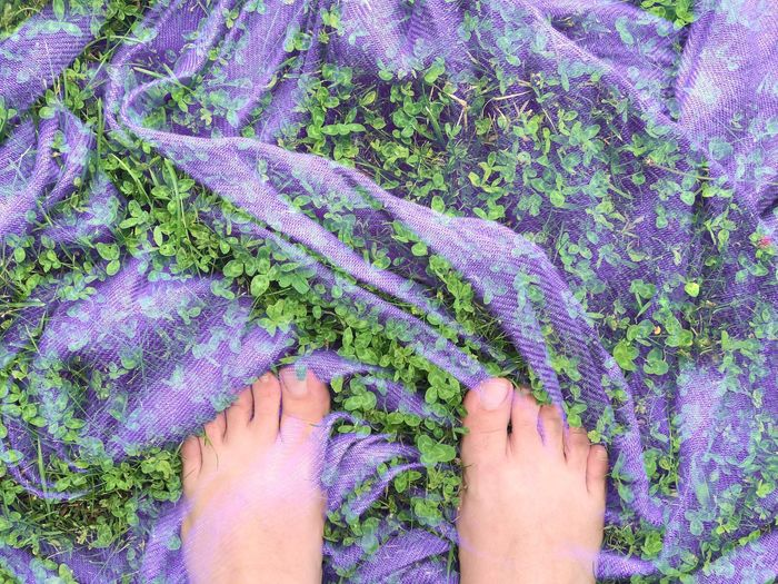 Low section of person legs against plants