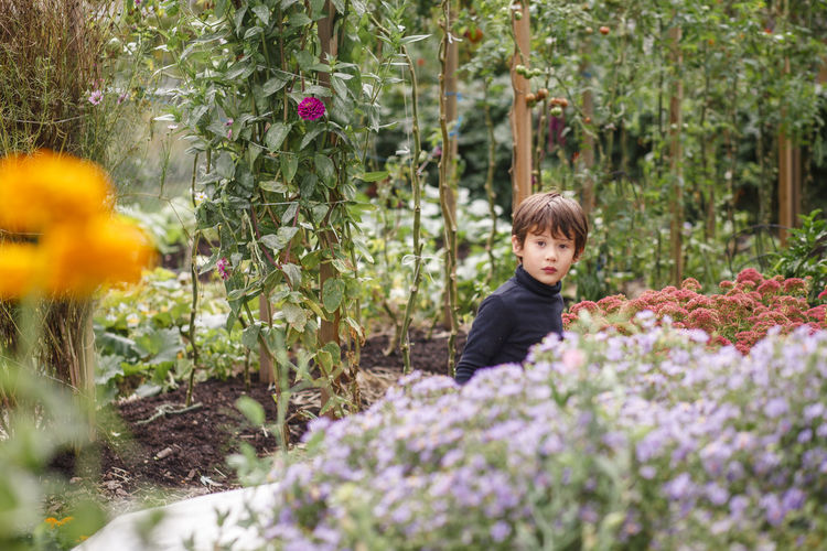Portrait of boy with flowers on plants