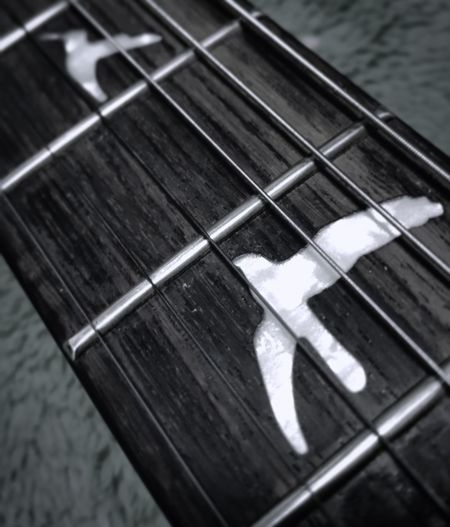 PRS PRS Paul Reed Smith Guitar Bird Taking Photos Enjoying Life Cool Black & White Black And White Blackandwhite Music