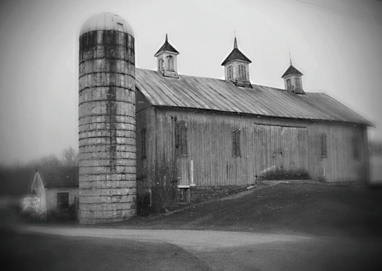 Showcase: January Rural Landscape Rural Scenes Pennsylvania Pennsylvania Beauty Rural America Countryside Eye4photography  EyeEm Gallery EyeEm Best Shots Barns Farmhouse Rural Scene Rural Exploration Followme