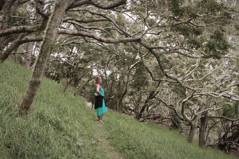 Mystical Forest Wanderlust Travel Ethereal Plant Tree One Person Real People Full Length Casual Clothing Growth Beauty In Nature Nature Walking Women Outdoors Grass Standing Leisure Activity Lifestyles