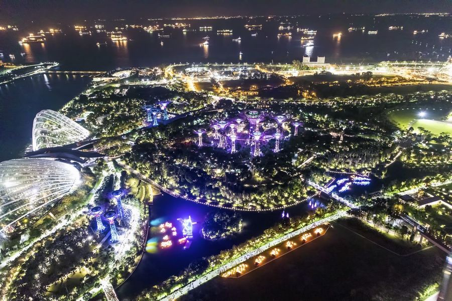 Singapore Architecture Bridge - Man Made Structure Building Exterior Built Structure City Cityscape Fake Trees Garden Illuminated Modern Nature Night No People Outdoors Sky Solar Eclipse Water