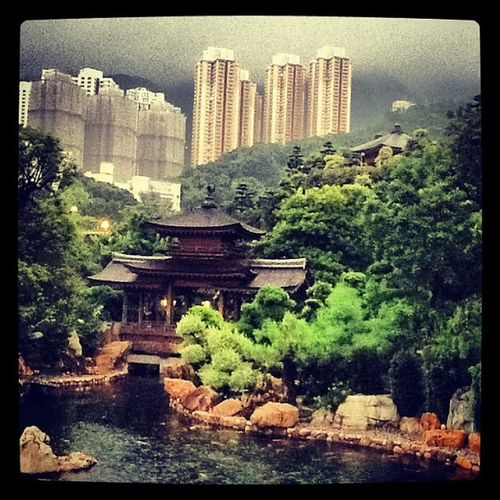 Peace & tranquility in the midst of HongKong 's urban sprawl Instagramyourcity
