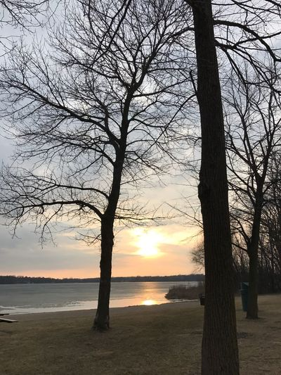 Nature Sunset Tree Beauty In Nature Bare Tree Sky Sun Tranquil Scene Tranquility Scenics Sunlight Water No People Outdoors Silhouette Sea Branch Day