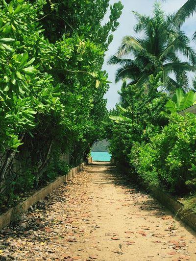 Lanikai beach. Hawaii Lanikai Beach Beach EyeEm Best Shots EyeEm Nature Lover EyeEmBestPics