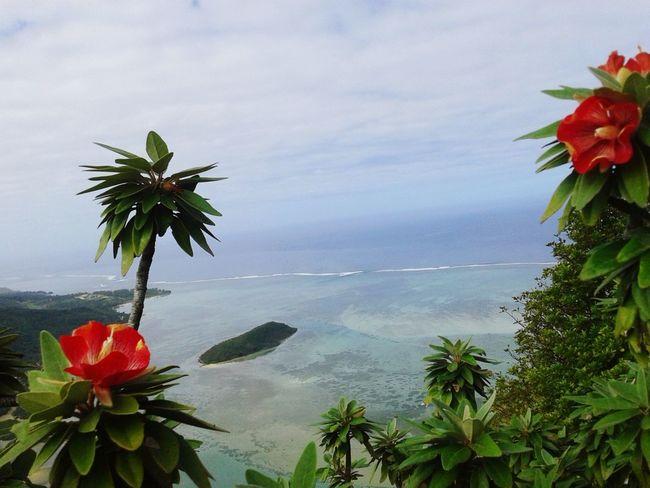 Sea And Sky flo Flower Rare Le Morne-Mauritius Trochita Mauritius Landscape Nature Seascape Mountains Uniqueness Mauritius Island