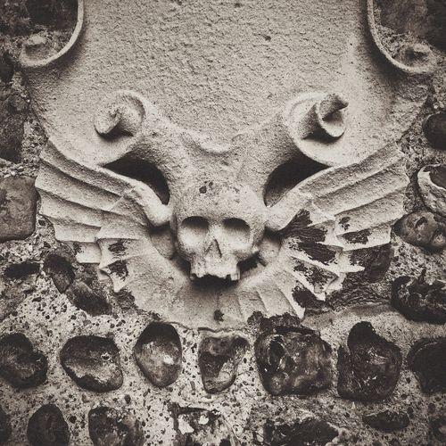 Skulls Skull Architecture Black & White