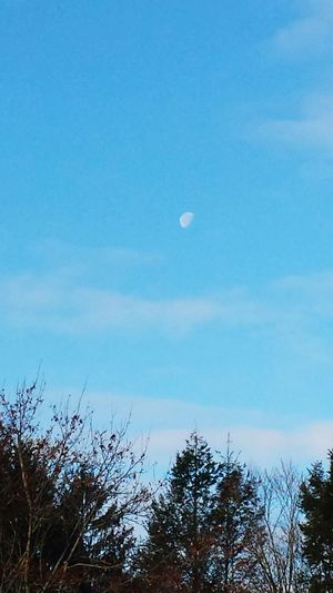 The Moon Daytime Moon