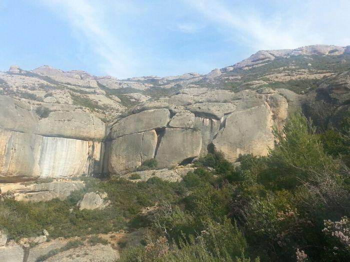 Nature Catalunya Catalonia Montsant Priorat