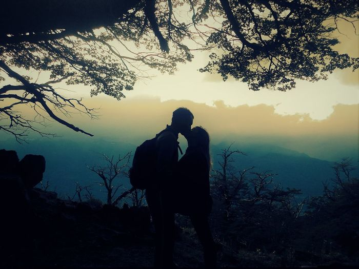Silhouette couple romancing by trees on field at dusk
