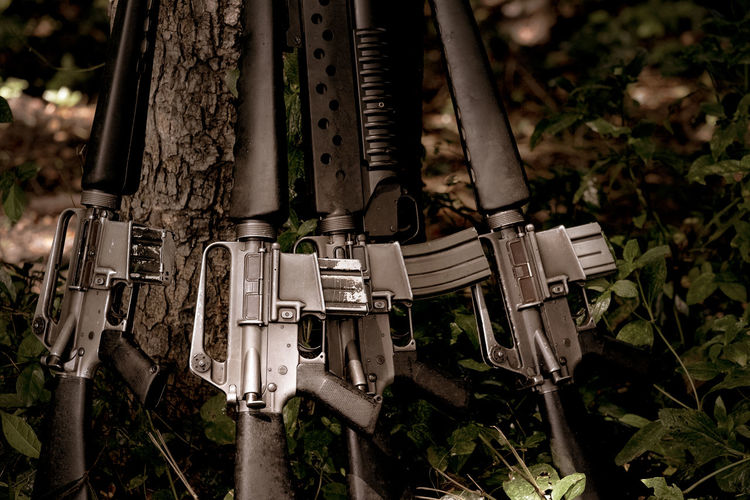 Guns at tree forest after war Weapon Gun Day Land Nature Focus On Foreground Plant Outdoors Metal No People Field Protection Security Rifle Safety Close-up Sign Tree Ammunition THREATS Aggression
