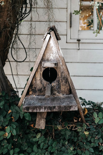 A little birdhouse 🐦 Birdhouse Built Structure Architecture Tree Day No People Plant Building Exterior Wood - Material Close-up Leaf Plant Part Branch
