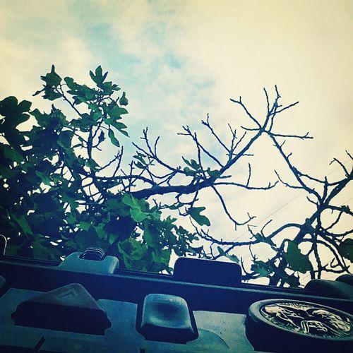 Sky before rain First Eyeem Photo