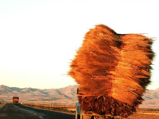 Sunset Golden Sunset Job Fin De Journée End Of The Day Road Route Transporter Fouin Car On The Road Horizon