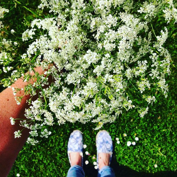 Beauty In Nature Close-up Day Feet Flower Freshness Human Body Part Human Leg Looking Down Low Section Nature One Man Only One Person Outdoors People Plant Real People Selfie Shoe Shoes Shoeselfie Standing Tree View View From Above