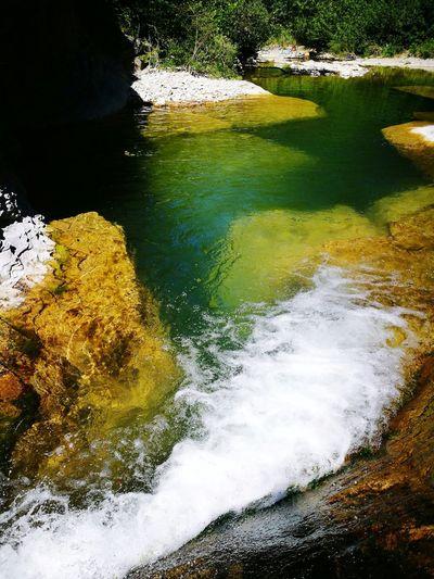 Premilquore Italy River Green Fiume Alberi