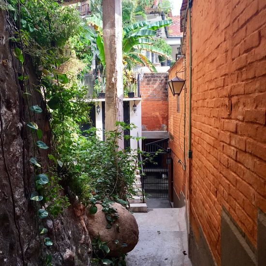 Shared neighbors entrance Street Photo Mexican Culture Architecture Outdoors Day Architectural Feature No People Plant Neighborhood Front Door Homes Around The World