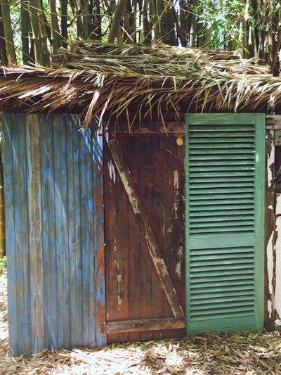 Close-up of shed