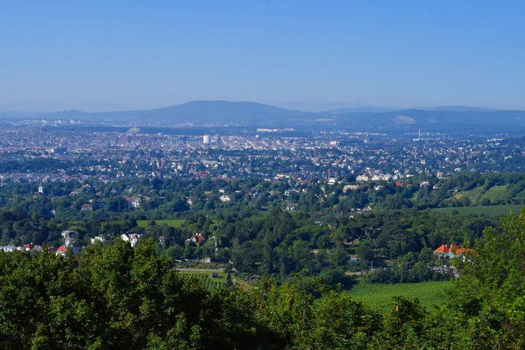 Vienna view.
