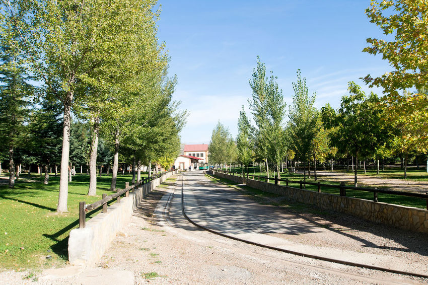Utrillas Terual Moseo minerio y alrededores. Octubre 2018 2018 October Teruel Utrillas Architecture Built Structure City Day Direction Eddl Empty Footpath Green Color Growth Nature No People Outdoors Plant Road Shadow Sky Sunlight The Way Forward Transportation Tree Treelined