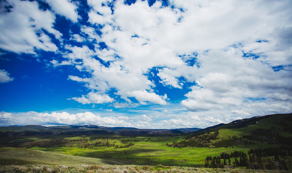 Yellowstone National Park panoramic landscape EyeEm EyeEm Best Edits EyeEm Best Shots EyeEm Best Shots - Nature EyeEm Nature Lover EyeEm Selects EyeEm Gallery EyeEmBestPics EyeEmNewHere Yellowstone Ecosystem Yellowstone National Park Yellowstone Wildlife Beauty In Nature Cloud - Sky Eye4photography  Eyeemphotography Landscape Mountain No People Outdoors Tranquil Scene