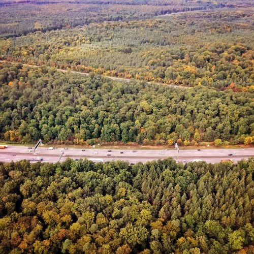 Forest Aerial Shot Street Highway Nature Top View Germany Neu Isenburg