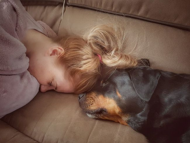 Miss this lady 💔 Dog Rottweiler Dogs Of EyeEm Black And Tan EyeEm Selects Domestic Animals One Animal Close-up Last Photo Portrait Relaxation Young Women Lying Down Headshot Beauty Human Face Sleeping Eyes Closed  Close-up