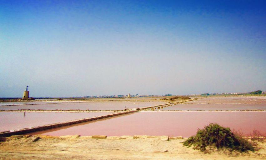 Saline Marsala Sicily Sicilia Salt Pink Pink Water