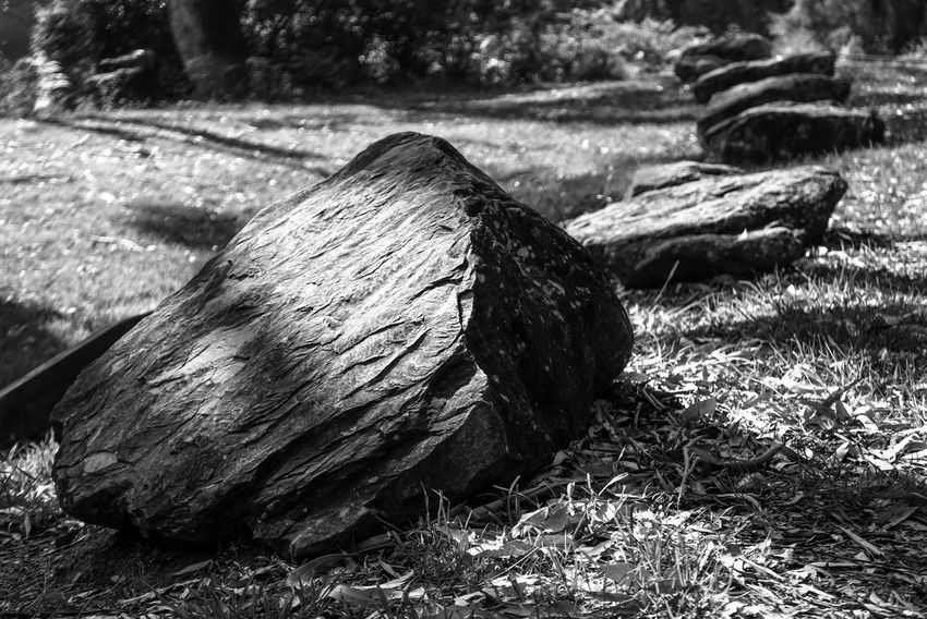The rocks Light And Shadow Black And White Monochrome Rock Grass No People Wood - Material Day Outdoors Log Field Nature