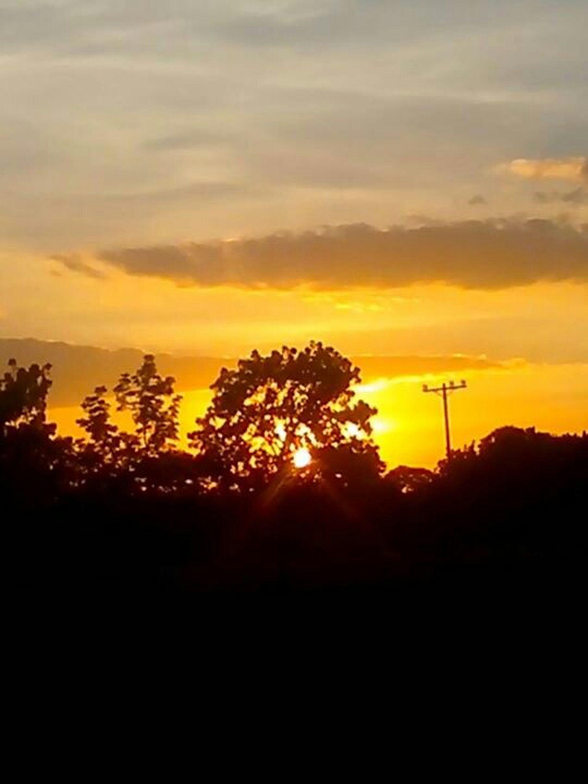 sunset, silhouette, orange color, sky, beauty in nature, tree, scenics, tranquility, tranquil scene, cloud - sky, nature, idyllic, landscape, cloud, dark, sun, dramatic sky, outdoors, no people, outline