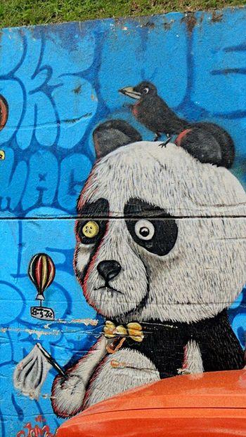 Comuna 13 Callesdemedellin Sinfiltros Graffitours