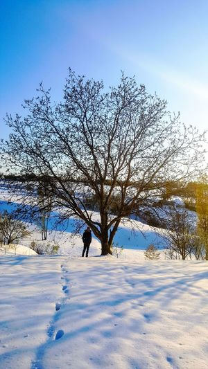 Spring on Romania,april 21 Nature Snow Outdoors Beauty In Nature