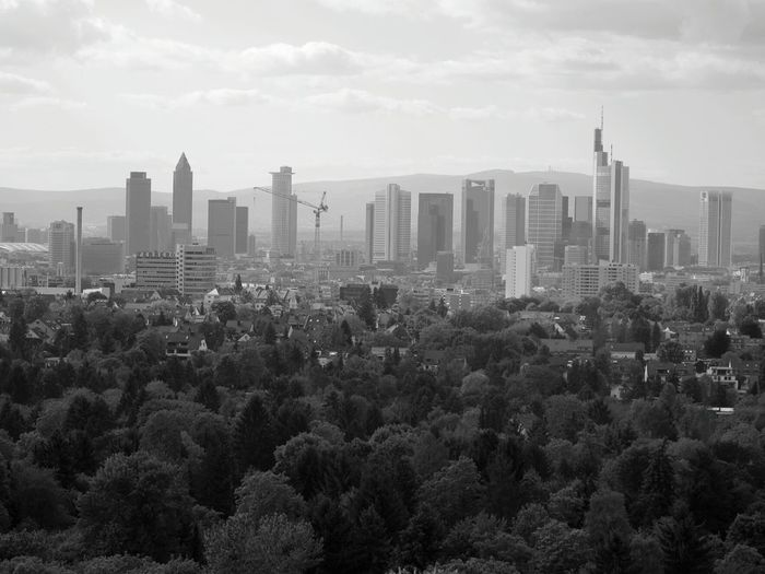Skyline Frankfurt Germany Hanging Out OpenEdit From Where I Stand Black And White Photography Architecture_bw Toweringabove Looking Up Can Be So Rewarding The Architect - 2016 EyeEm Awards