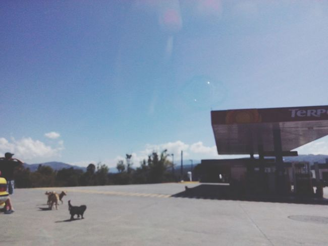 Sunbathing Mistery Landscape