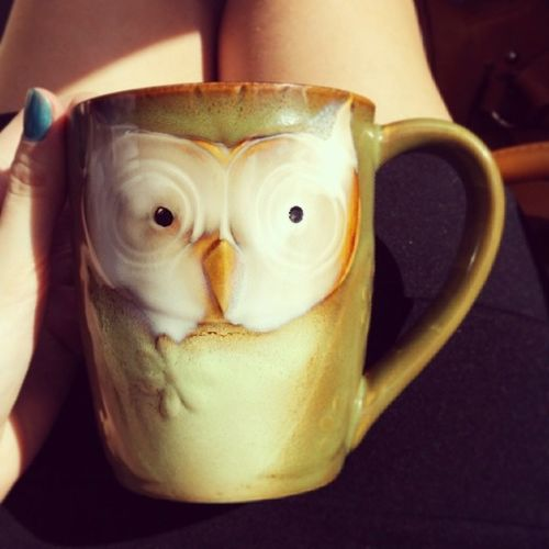 Bought my wife this awesome cup she's seriously obsessing about.. lol She likes owls. 3D Coffemug Owl Loveher