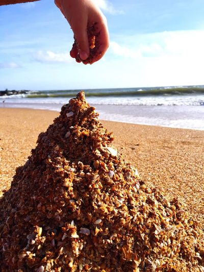 Sand Shells Life Is A Beach Good Times From My Point Of View Holiday POV