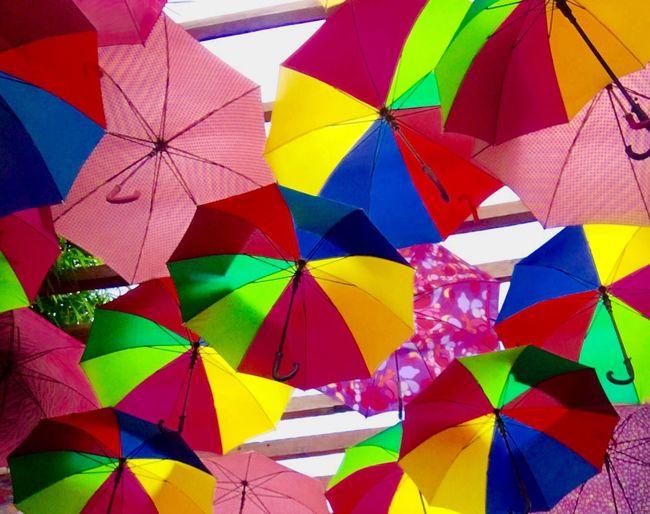 The Magic Mission Umbrella Colorful Freedom