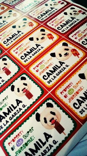 Cami 's school tags Backtoschool Tags Nametag Panda Pandawithposicle Property Proprtyoftheawesome