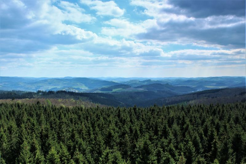 View from Lörmecke-Tower Beauty In Nature Cloud - Sky Day Forest Growth Landscape Mountain Mountain Range Nature No People Outdoors Sauerland Scenics Sky Tranquility Tree View Viewpoint