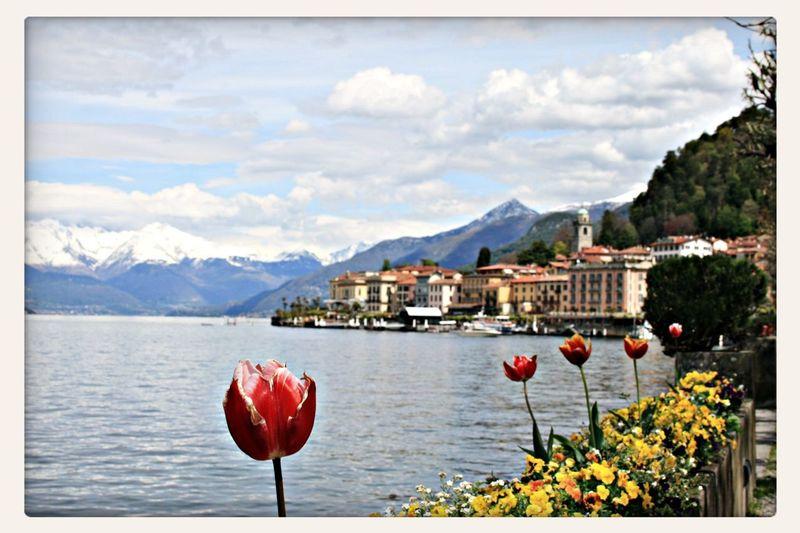 Como Lake The Great Outdoors - 2016 EyeEm Awards
