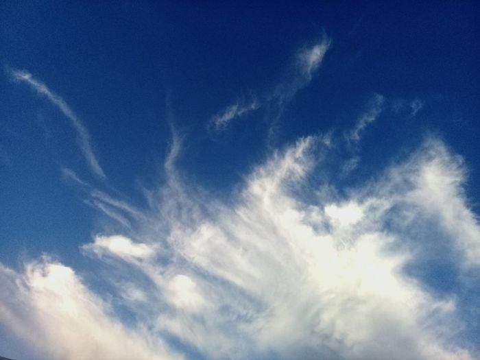 The wonderful sky Sky And Clouds Sky_collection Sky Collection Skylovers Skyviewers Skyblue Blue Sky Blue Sky And Clouds Blue Sky White Clouds Blue Sky And White Clouds Blue Sky With Clouds Backgrounds Blue Sky Only Sky Cloud - Sky Dramatic Sky Cloudscape Atmospheric Mood Cumulus Cloud Cumulus Moody Sky