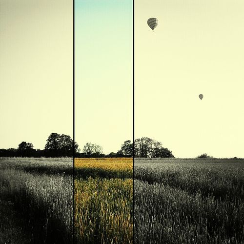 Landscape Hot Air Balloons