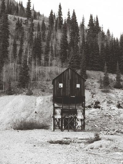Stilt house in forest