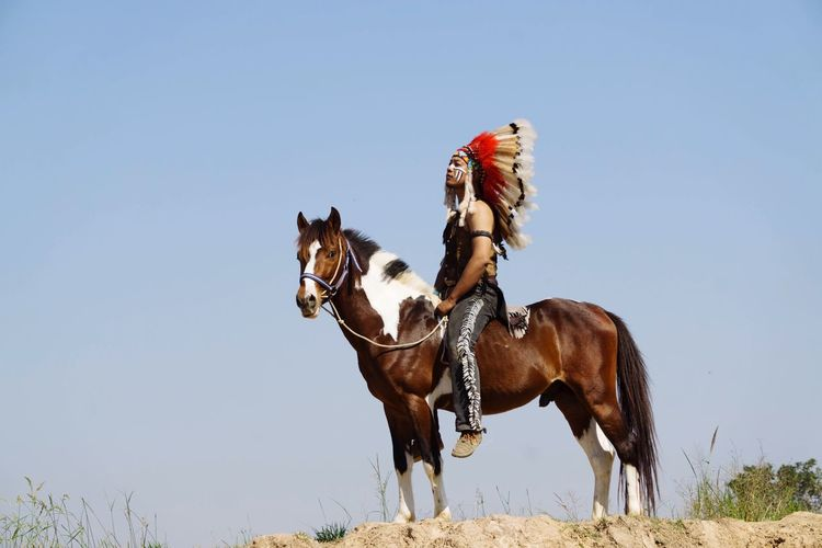 Man Horseback Riding On Field Against Clear Sky During Sunny Day