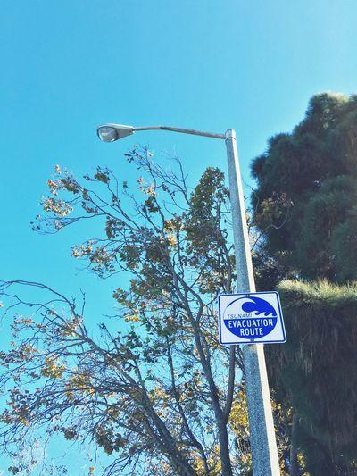 sign. Vscocam San Francisco