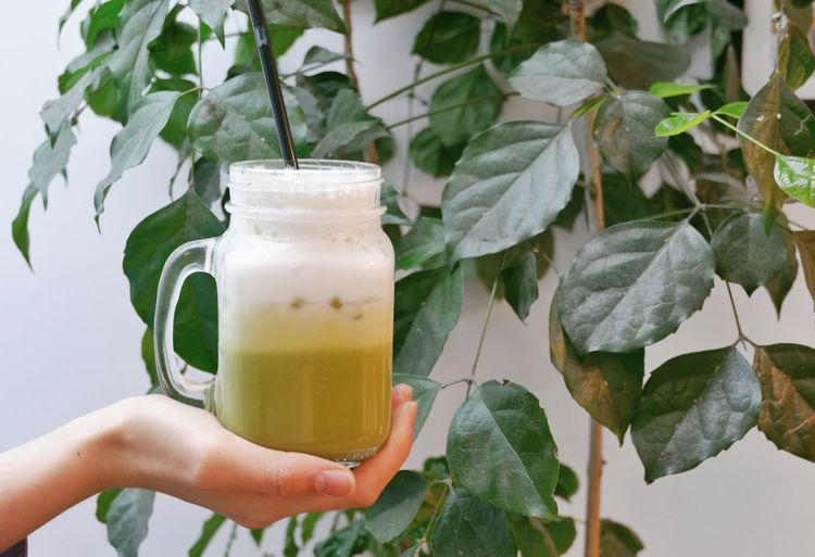 Close up a woman hand hold green tea latte in jar, leaf for background with copy space Mug Jar Restaurant Caffeine Cafe Ice Beverage Healthy Health Japanese  Japan Milk Latte Green Tea Greentea Green Lifestyle Refreshment Drink Human Hand Food And Drink Hand Leaf Drinking Glass Glass Plant Part Holding Freshness Food Lifestyles