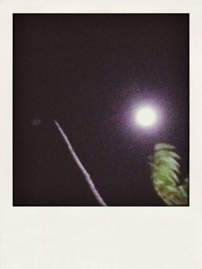 Luna Luner