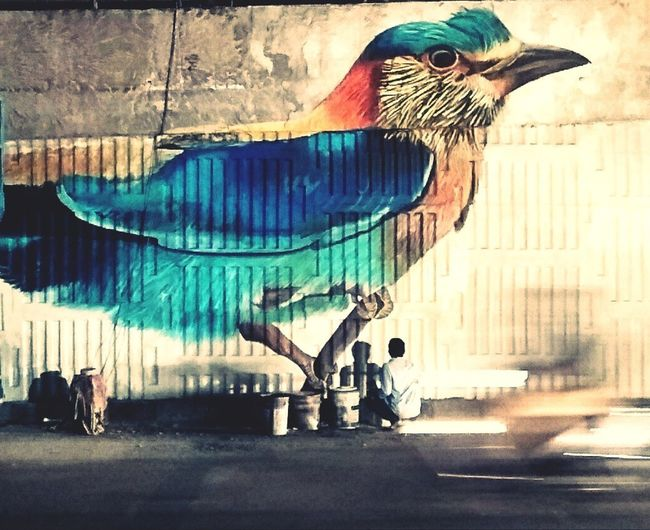 Bird street streetphotography suhailphotography EyeEmNewHere EyeEmNewHere India Hyderabad Graffiti Artist Colors